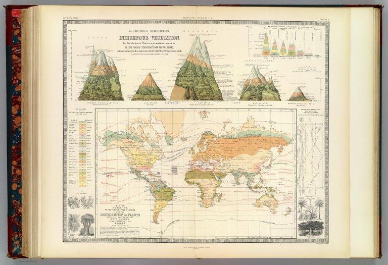 Distribution: vegetation.