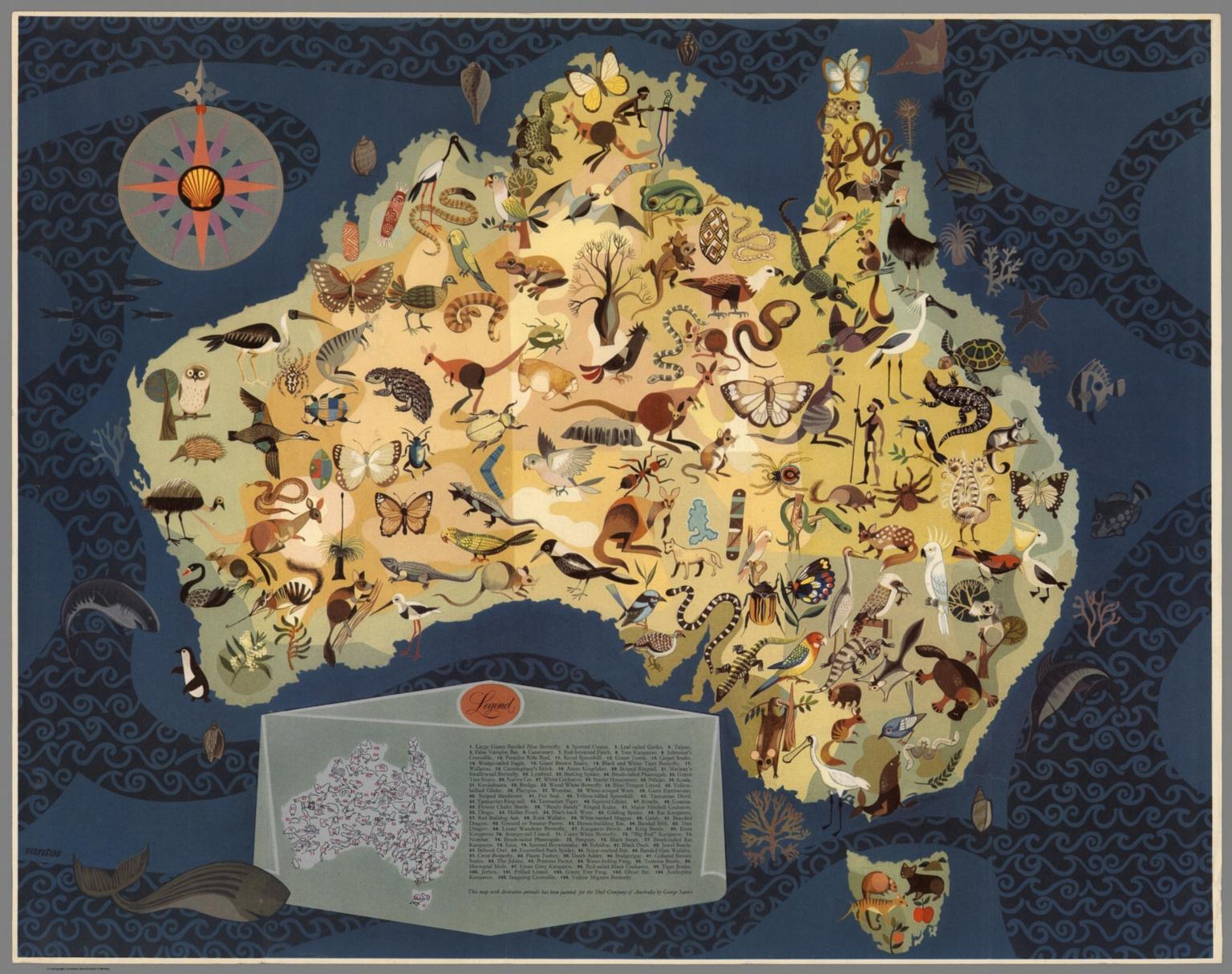 Australia - Decorative Animals by George Santos.